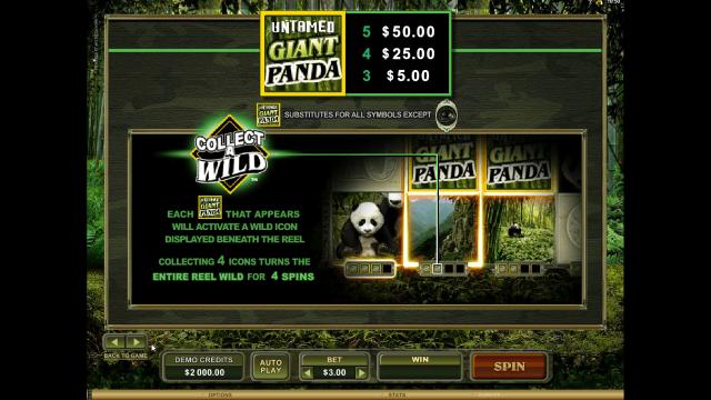 популярный слот Untamed Giant Panda 3