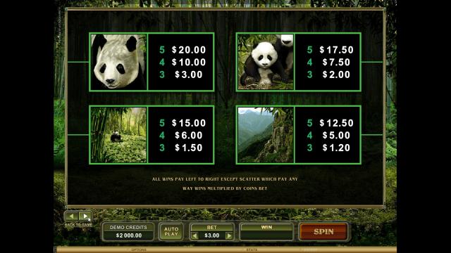 онлайн аппарат Untamed Giant Panda 6