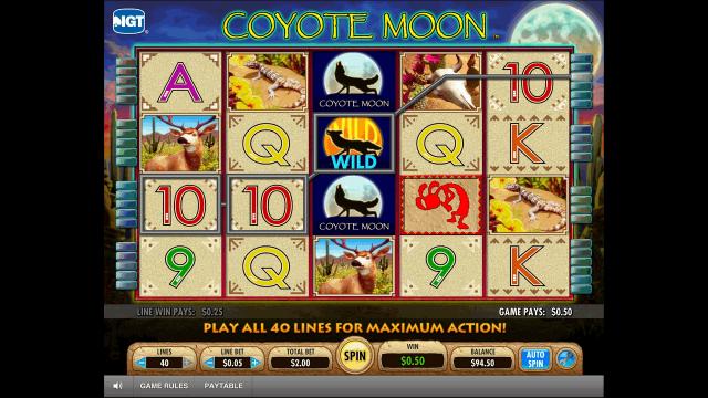 популярный слот Coyote Moon 4