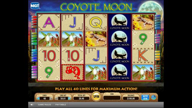 онлайн аппарат Coyote Moon 1