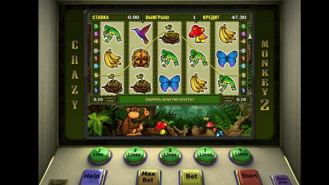 игровой автомат Crazy Monkey 2 10